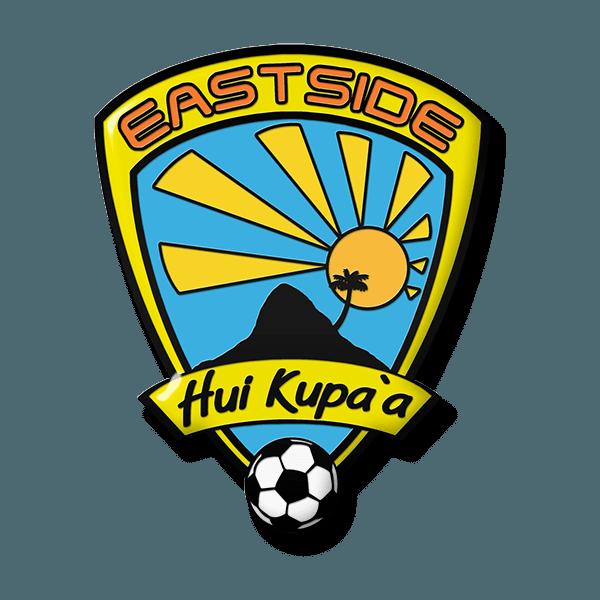 soccer trading pin